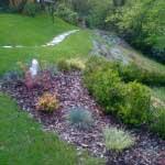 giardiniere Modena: giardinaggio, giardini Modena, giardino,giardini Maranello, piante, fiori, Giardini Eden, Green Creations, piscine, laghetti, potatura, aiuole, progettazione, erba, siepe,