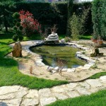 giardiniere Modena: giardinaggio, giardino, giardini Modena, giardini Formigine, piante, fiori, Giardini Eden, Green Creations, piscine, laghetti, potatura, aiuole, progettazione, erba, siepe,