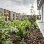 giardiniere Modena: giardinaggio, giardino, piante, fiori, Giardini Eden, Green Creations, piscine, laghetti, potatura, aiuole Reggio Emilia, aiuole Modena, progettazione, erba, siepe,