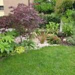 giardiniere Modena: giardinaggio, giardino, piante, fiori, Giardini Eden, Green Creations, piscine, laghetti, potatura, aiuole Castellarano, aiuole Modena, progettazione, erba, siepe,