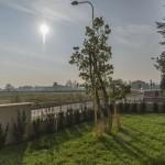 giardiniere Modena: giardinaggio, giardini Castelnuovo Rangone, giardini Modena, piante, fiori, Giardini Eden, Green Creations, piscine, laghetti, potatura, aiuole, progettazione, erba, siepe,